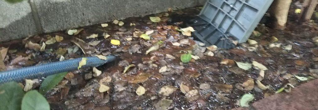 マンション 共用部 散水栓 漏水対応