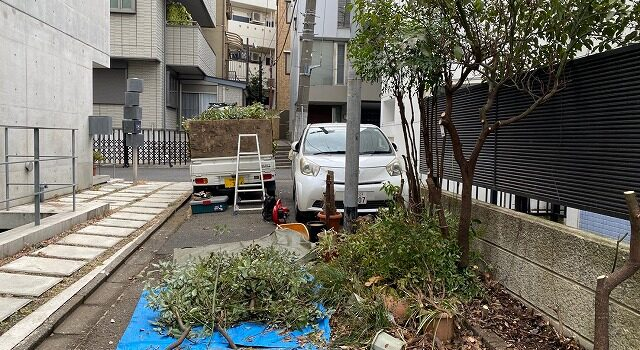 植栽 伐根作業
